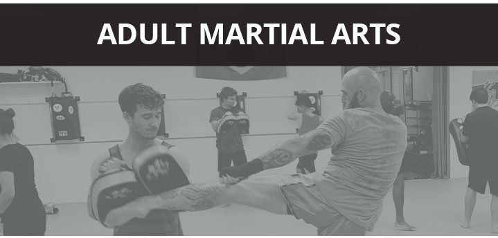 Adult Martial Arts Training in Wake Forest NC, Brazilian Jiu Jitsu Training near Raleigh NC
